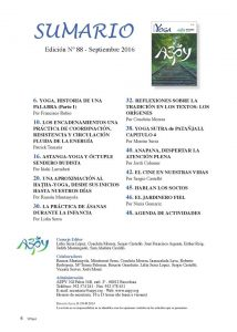 indice-aepy-88